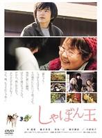 しゃぼん玉【藤井美菜出演のドラマ・DVD】