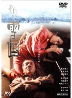 南野陽子出演:新・雪国