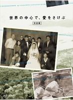 桜井幸子出演:世界の中心で、愛をさけぶ