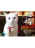 ドラマ「猫侍