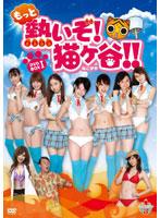 もっと熱いぞ!猫ヶ谷!!DVD-BOX
