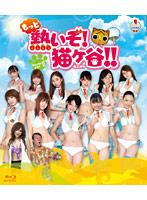 もっと熱いぞ!猫ヶ谷!!Blu-ray-BOX