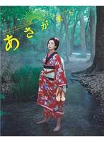 連続テレビ小説 あさが来た 完全版 BOX3 (ブルーレイディスク)