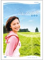 連続テレビ小説 風のハルカ 完全版 DVD-BOX 1
