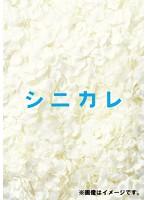 橋本甜歌出演:シニカレ