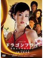 国分佐智子出演:ドラゴンフライ
