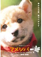 連続テレビドラマ