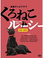 川上麻衣子出演:連続テレビドラマ