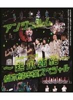 アンジュルム コンサート2020
