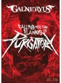 FALLING INTO THE FLAMES OF PURGATORY/GALNERYUS(完全生産限定版 ブルーレイディスク+2CD+TシャツM)