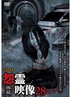 投稿 怨霊映像28 惨篇