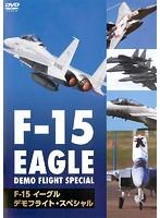 F-15 イーグル・デモフライト・スペシャル