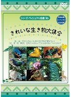 シリーズ・ヴィジュアル図鑑 26 きれいな生き物大集合