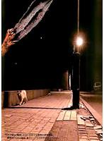 死ナリオ-可愛すぎる子猫の恐ろしすぎる復讐
