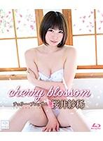 チェリー・ブロッサム/桜井紗稀 (ブルーレイディスク)