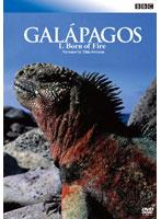BBC ガラパゴス 1 炎からの誕生