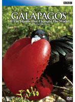 BBC ガラパゴス 2 進化論が生まれた島