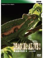BBC 爬虫類の世界 Vol.3 人との共存