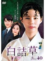 白詰草<シロツメクサ> Vol.40