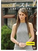 ゴースト~天国からのささやき ファイナル・シーズン Vol.11
