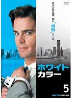 ホワイトカラー '知的'犯罪ファイル vol.5