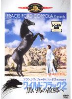 ワイルド ブラック 2/黒い馬の故郷へ