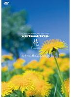 virtual trip 花 Flowers 四季の山野草と高山植物