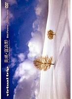 virtual trip 美瑛・富良野-snow fantasy- (ブルーレイディスク)