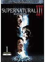 SUPERNATURAL スーパーナチュラル XIV  Vol.1