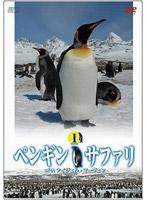 ペンギン・サファリ with ナイジェル・マーヴェン vol.1