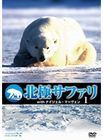 北極サファリ with ナイジェル・マーヴェン vol.1