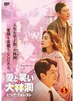 愛と笑いの大林洞-ビッグ・フォレスト- Vol.3