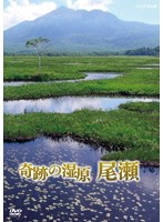 NHKスペシャル 奇跡の湿原 尾瀬