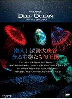NHKスペシャル ディープ オーシャン 潜入!深海大峡谷 光る生物たちの王国