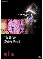 NHKスペシャル 人体 神秘の巨大ネットワーク 第1集'腎臓'が寿命を決める