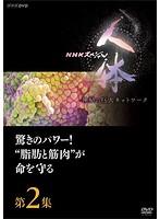 NHKスペシャル 人体 神秘の巨大ネットワーク 第2集 驚きのパワー!'脂肪と筋肉'が命を守る
