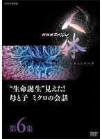 NHKスペシャル 人体 神秘の巨大ネットワーク 第6集'生命誕生'見えた!母と子 ミクロの会話