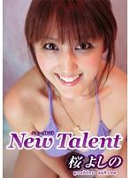 New Talent/桜よしの