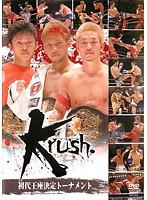 Krush 初代王座決定トーナメント