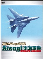 伝説のWings2000 Atsugi 米海軍機 Special Edition