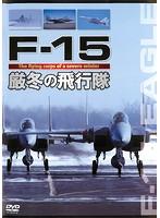 F-15 厳冬の飛行隊