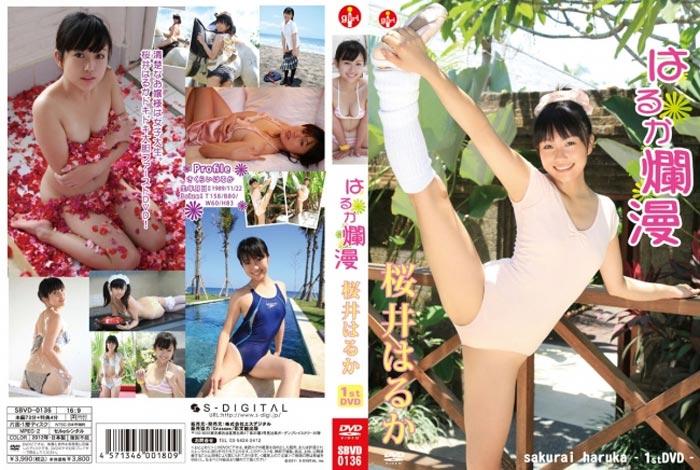 SBVD-0136 Haruka Sakurai 桜井はるか – はるか爛漫
