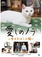 愛しのノラ ~幸せをはこぶ猫~