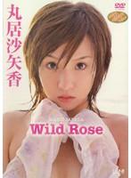 アイドルワン Wild Rose/丸居沙矢香