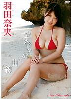 やわらかな曲線/羽田奈央