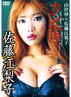 カンペキ Perfection/佐藤江梨子