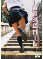 東京階段ガール