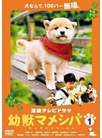 連続テレビドラマ版 幼獣マメシバ 1