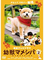 連続テレビドラマ版 幼獣マメシバ 2