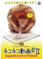 ネコネコ動画 II~世界のおもしろニャンコ大集合~